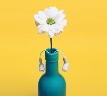 earbuds in vase